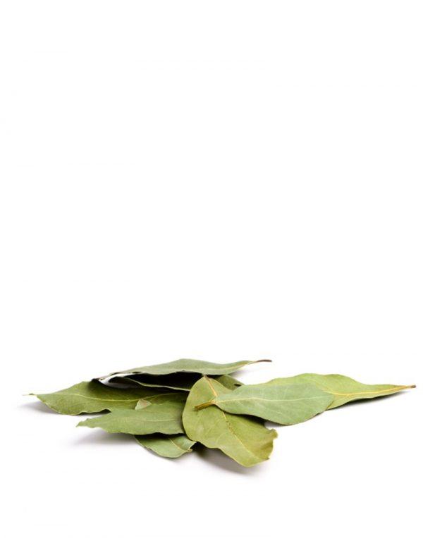 laurel hojas ecologico