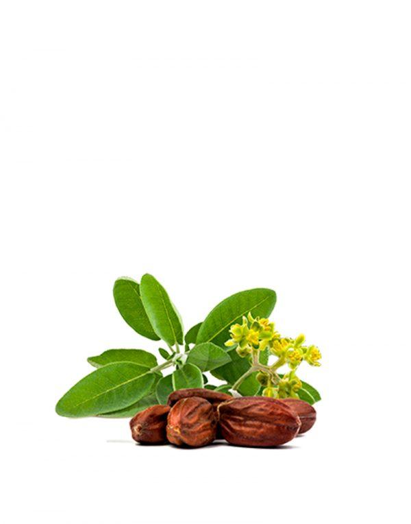 aceite de jojoba ecologico