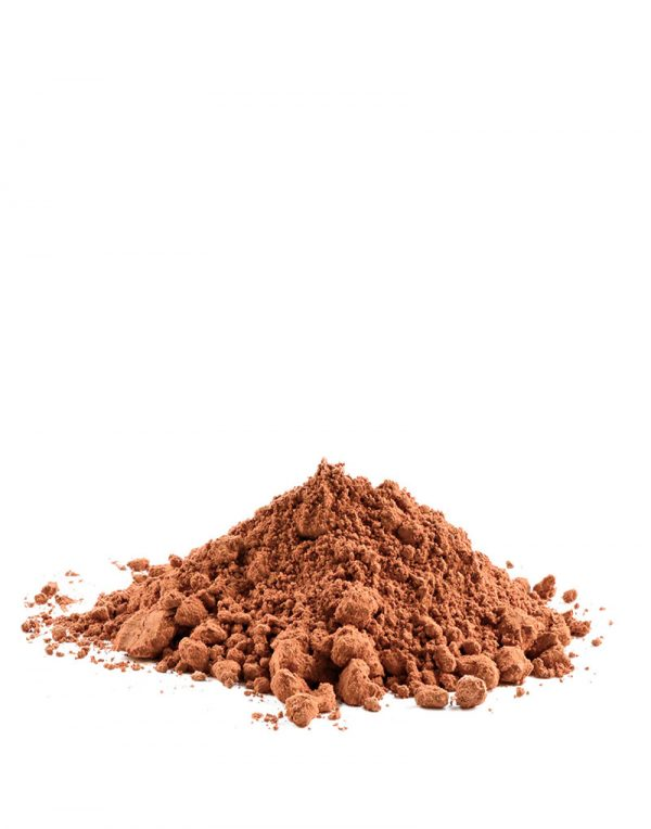 cacao soluble ecologico