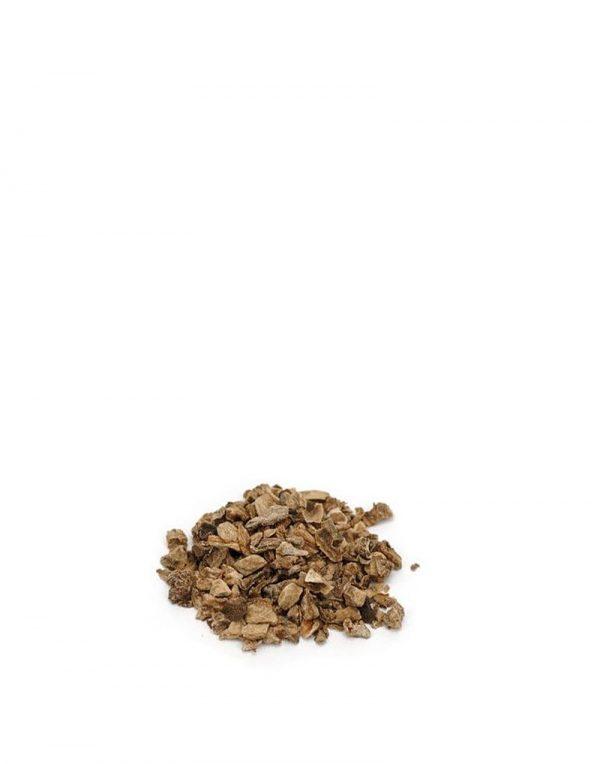 harpagofito raiz ecologica naturdis