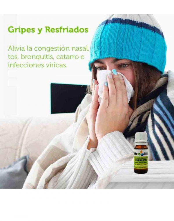 usos aceite esencial de eucalipto ecologico