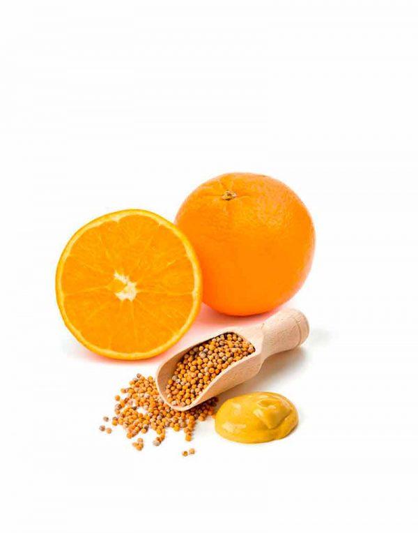 salsa mostaza naranja gourmet